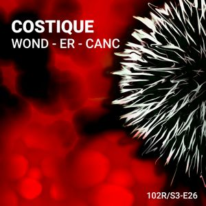 102 Podcast – S3E26 – Wond - Er - Canc by Costique