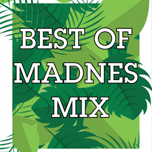 Best Of MadNes Mix