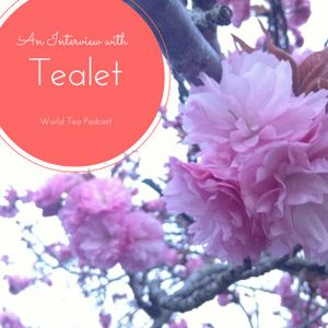 An Interview with Tealet