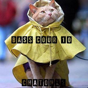 Bass Cour 10