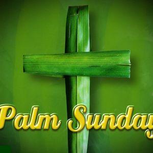 Palm Sunday - Nick Greenop - 29th March 2015