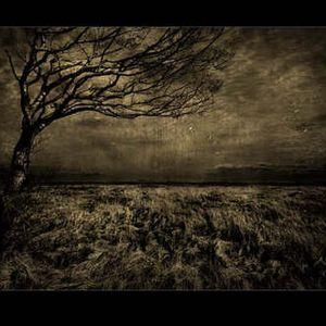Alirobit-Darker