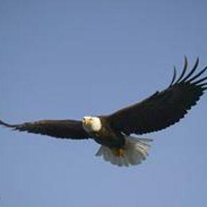 auReL @ i'M FLYiNG oVeR You (oCToBeR 2012)