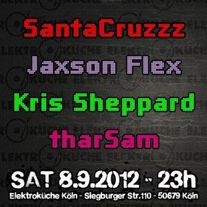 Kris Sheppard@elektroküche (cologne, 08-09-2012)