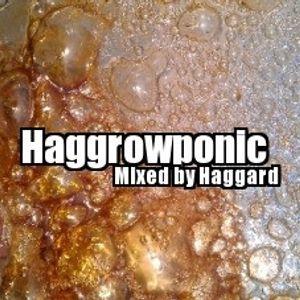 Haggard - Haggrowponic