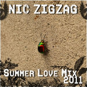 Nic ZigZag - Summer Love Mix 2011
