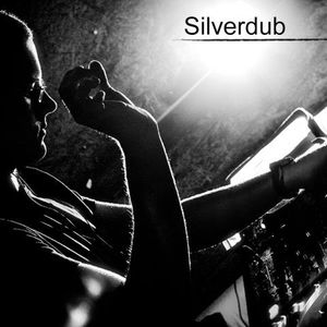 028 - MBR mixed by Silverdub (2011-02-22)