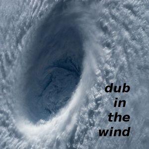 dub in the wind