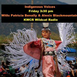 IndigenousVoices11-10-2017