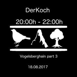 DerKoch Vogelsberghain part3 / 18.8.17