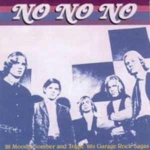 No No No   28 Moody Somber and Tragic '60s Garage Rock Sagas