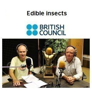 Edible insects - English Language Corner