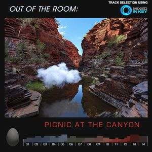 #090 OUT OF THE ROOM: Picnic At The Canyon (2019-08-09)