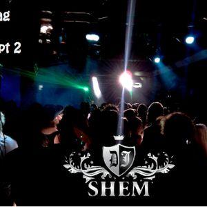 Dj Shem - Dub Bag Vol. 7 Part Two