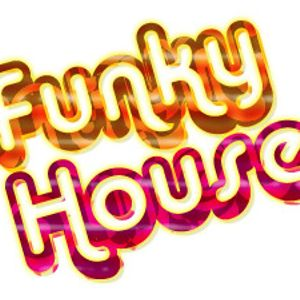 FUNKY HOUSE MUSIC DJ SET. VOL. 1