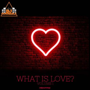 What Is Love Volume 1
