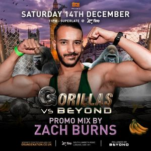 DJ ZACH BURNS - GORILLAS vs BEYOND Promo Mix (Nov 2019)