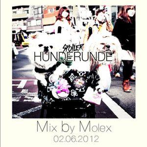 Die Allerletzte) Hunde Runde at Morlox Club live mix by molex