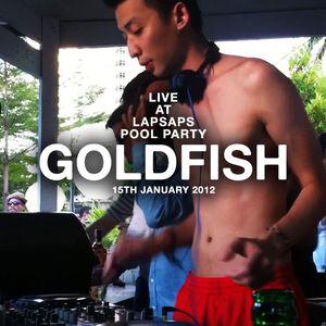 DJ Goldfish Live @ LapSap's Pool Party 2012