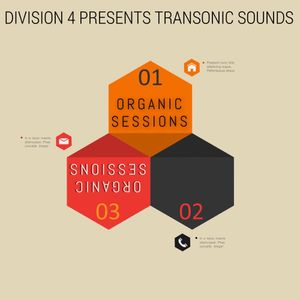 Division 4 presents Transonic Sounds - Organic Sessions