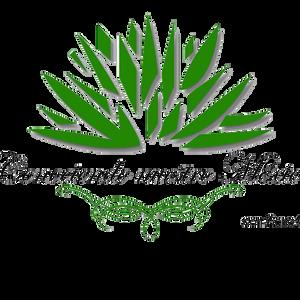 Conociendo Nuestro México 2015 05 02