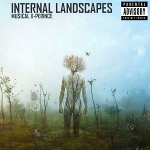 Musical X-Perience - Internal Landscapes