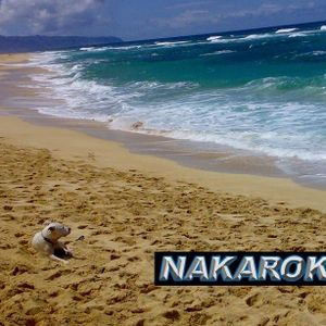 DJ NAKAROK 2011 Summer Mix