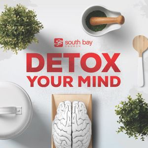 Detox Your Mind | Andy Wood | 11.8.15