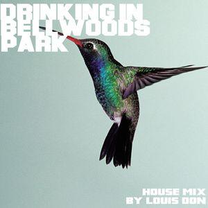 Drinking In Bellwoods Park