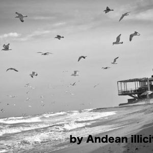 Late September Podcast by Andean illicit