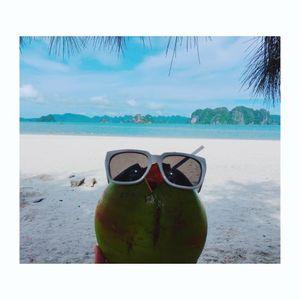 Deep/Tropical house - Summur 2017 - D.HaHa remix