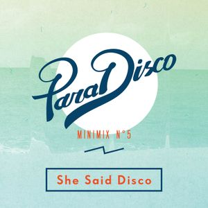 Minimix V: She Said Disco
