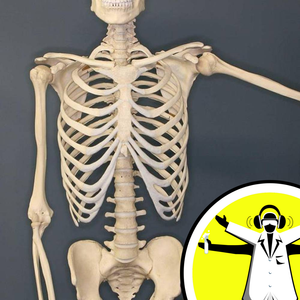 Boosting Your Bones