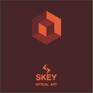 optical art 04