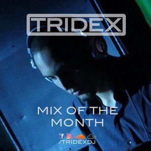 TRIDEX - Mix #7: Live at New Moon Tech Fest 24.06.17