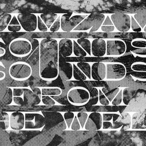 Sounds From The Well (23/10/2019) w/ Zam Zam Sounds & Alter Echo