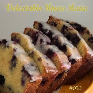 Delectable House Music #030 with DJ Jolene on Maker Park Radio
