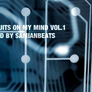Dj samianbeats(ARG) - Circuits on my mind (March-April 2k11)no edit