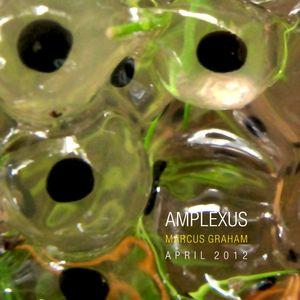 Marcus Graham - Amplexus - April 2012
