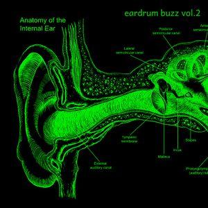 Eardrum Buzz Vol. 2