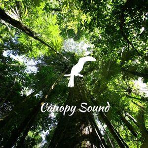Canopy Sound 001