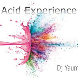 Acid Experience