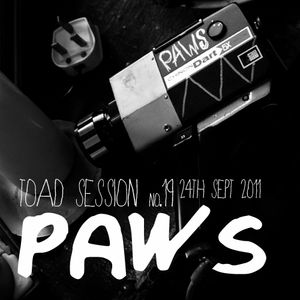 Toadcast #196 – PAWS Toad Session
