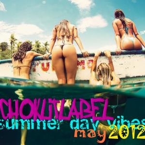 V.A. - Summer Day Vibes - Choklitlabel - [12.05.2012]