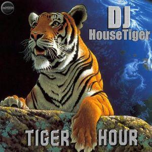 HouseTiger - Tiger Hour February 2014 #2