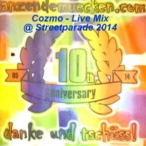 Cozmo - Live Mix @ Streetparade 2014 @ Tanzendemuecken.com Lovemobile