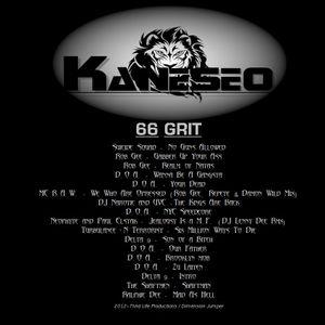 Kaneseo - 66 Grit