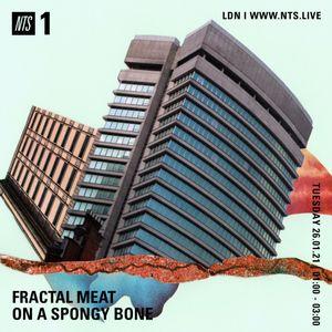 Fractal Meat On A Spongy Bone - 25th January 2021