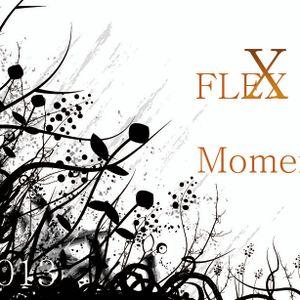 BenFleXx 2013 @ FleXx Moment @