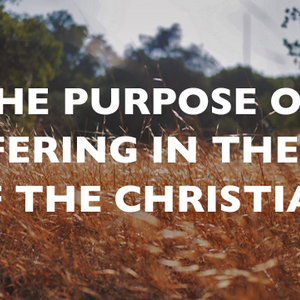 The Purpose of Suffering in the Life of the Christian - Audio